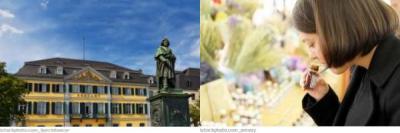 Bonn Bachblütentherapie