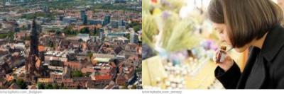 Freiburg Bachblütentherapie